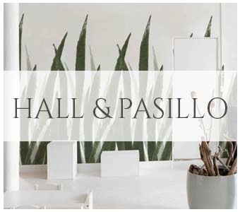 Hall y pasillo